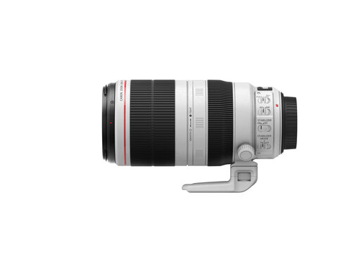 Canon EF 100-400mm f/4.5-5.6L IS II USM - 2